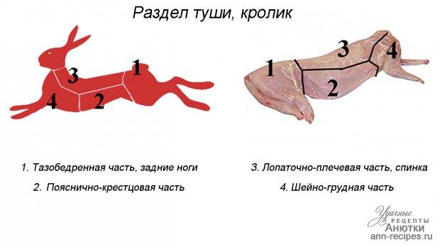 гвоздика корица от паразитов