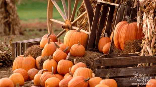 Пищу употребляются крупные плоды они бывают желтого зеленого или оранжевого